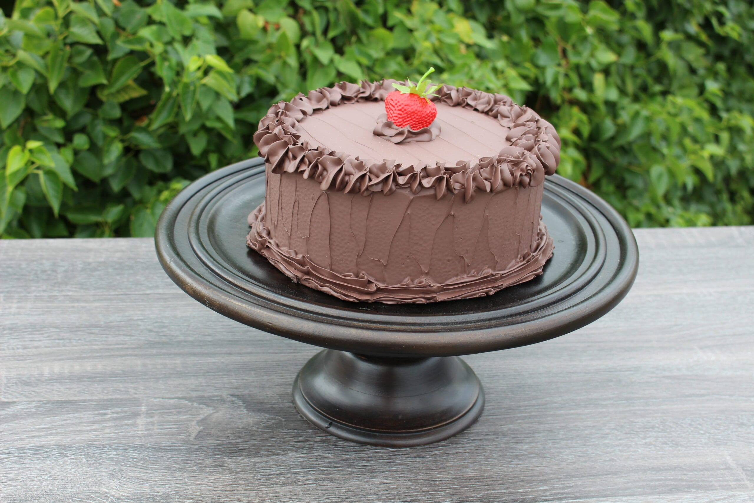 Fake Large Chocolate Frosted Cake