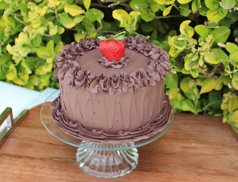 Fake Small Chocolate Frosted Cake