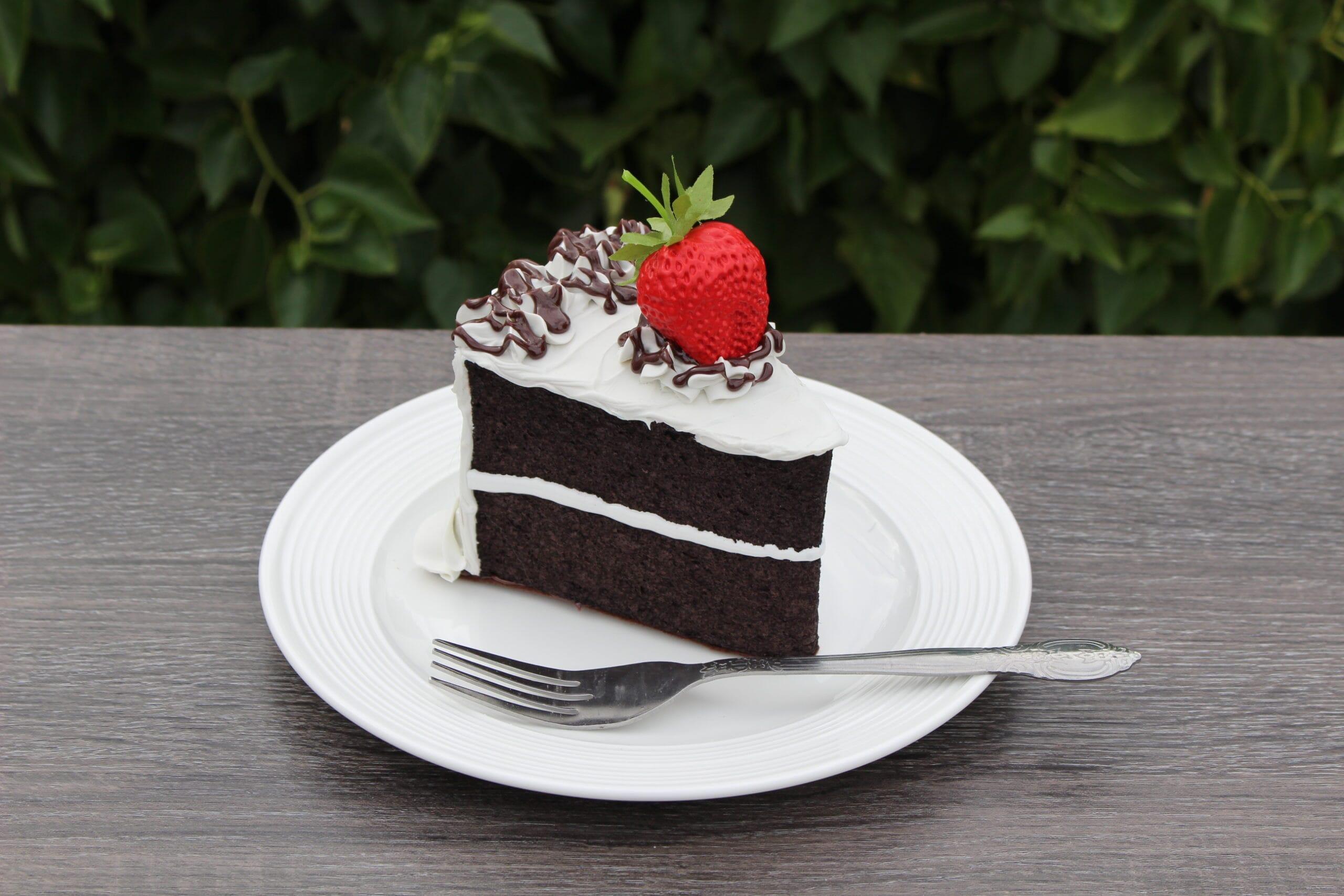 Fake Vanilla Frosted Slice of Chocolate Cake