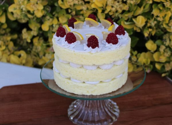 Fake Lemon Layer Cake Topped Vanilla Frosting and Lemon Slices